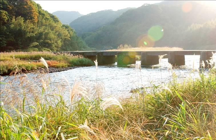 http://www.vill.minamiyamashiro.lg.jp/cmsfiles/contents/0000000/704/koijibashi.jpg